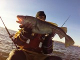 kayak fishing newbiggin cod