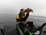 Cod caught on Fiiish Minnow lure