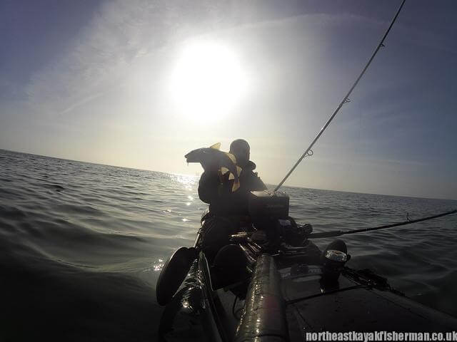 Kayak Fishing Cod 1 Blyth