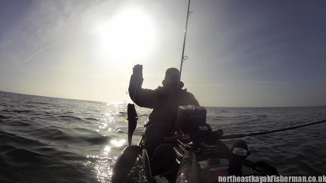 Kayak Fishing Cod 3 Blyth