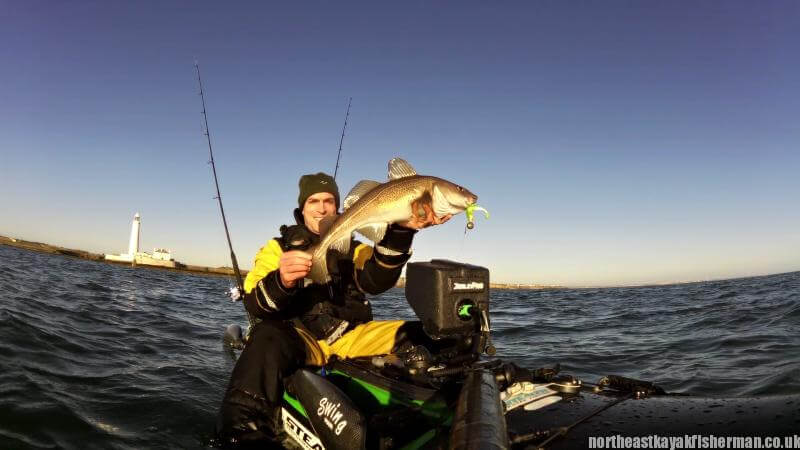 big cod on lures
