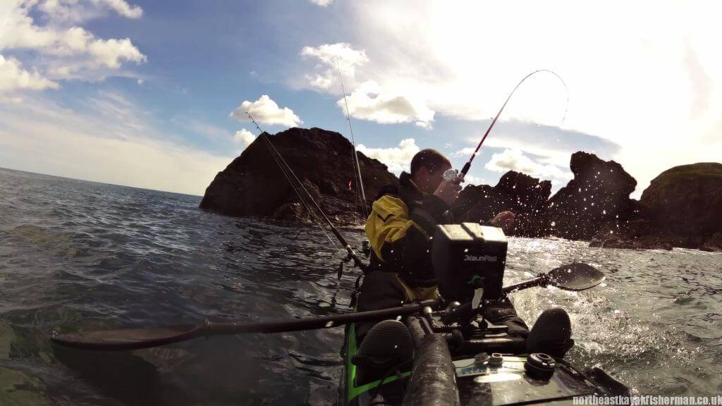 Pollock fishing UK Splash