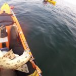 Kayak Fishing Luce Bay - Angry Bull Huss