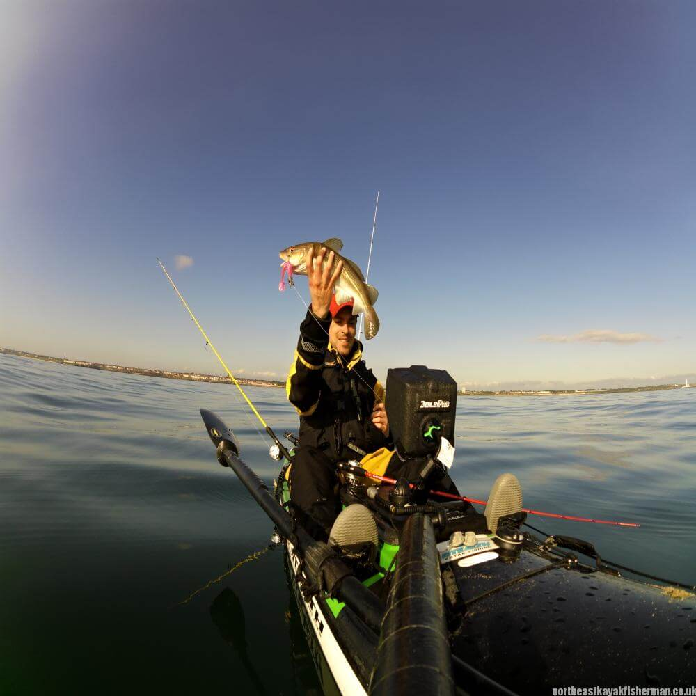 Kayak Fishing Cod on Lures